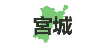宮城県(平成29年度外国人観光客受入環境整備促進事業補助金)