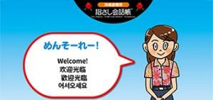 沖縄県指さし会話シート
